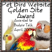 award4budgietalk.jpg